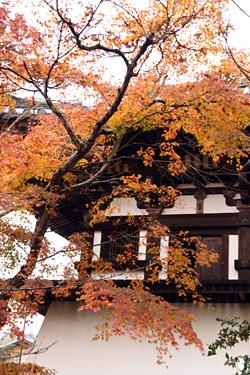 新薬師寺の鐘楼 まだ紅葉が少し残っていました