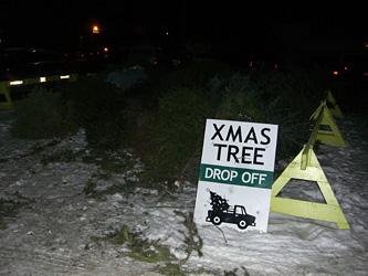 街中で見かけたクリスマスツリーの墓場