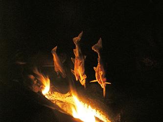 焚火で塩焼き