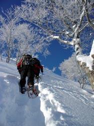 棒立山へ向け出発