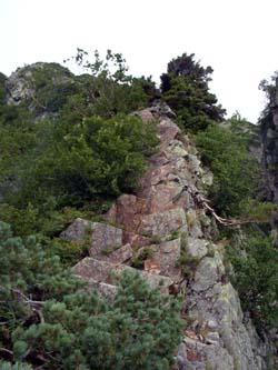 I峰への稜線