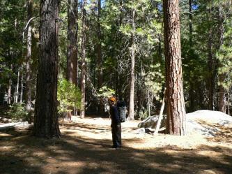 Climber Trail への入り口