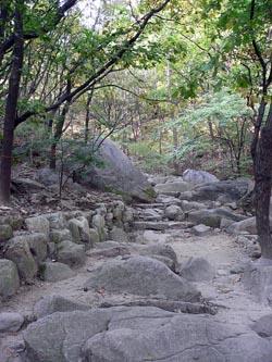 石畳の整備された道