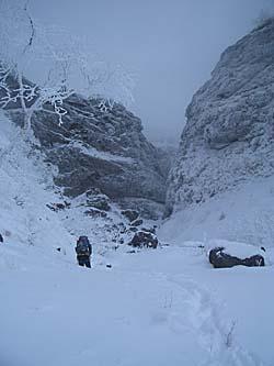 F3上の雪原