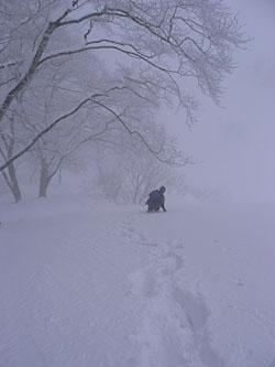 今日は吹雪