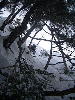 樹林帯 3P目