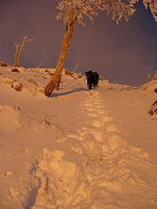 日光白根山 2日目 : 日の出の中を登る